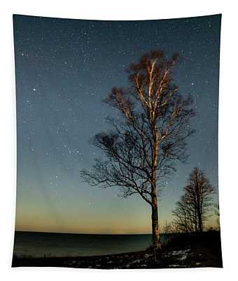 Moonlit Tree Tapestry