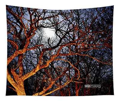 Moonshine 3 Tapestry