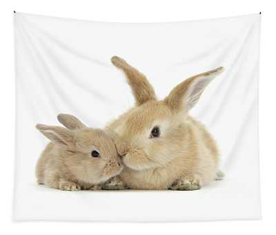 More Kissing Love Bunnies Tapestry
