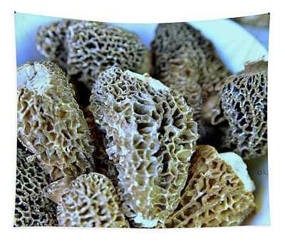 Morel Mushrooms Tapestry