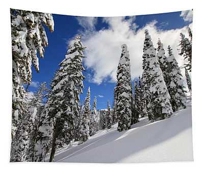 Mores Creek Summit Record Snow Fall Tapestry