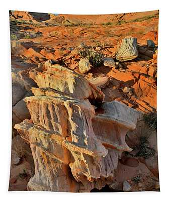 Morning Light On Beautiful Sandstone Form In Valley Of Fire Tapestry