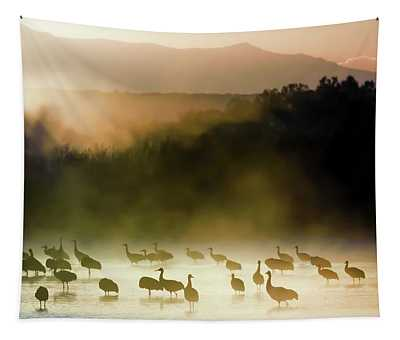 Morning Mist, Morning Color Tapestry