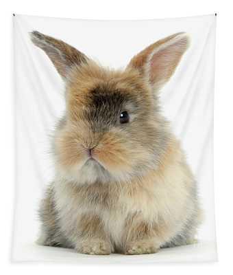 Motley Love Bunny Tapestry