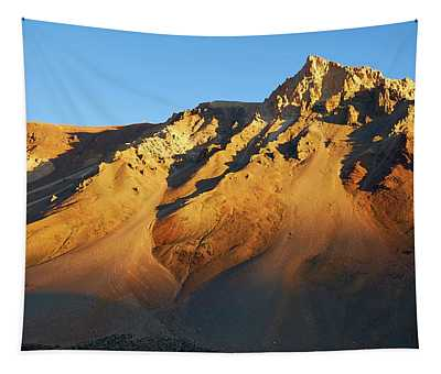 Tapestry featuring the photograph Mountain Gold by Whitney Goodey
