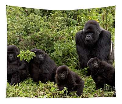 Tapestry featuring the photograph Mountain Gorilla Family by Ingo Arndt