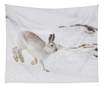 Mountain Hare Hopping Down A Hill Tapestry