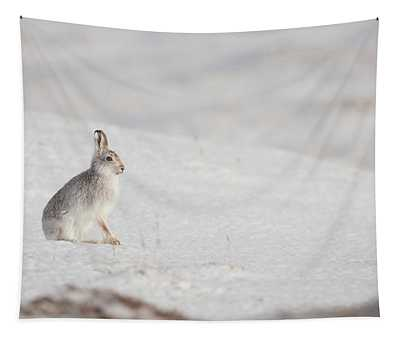 Mountain Hare Sat In The Snow Tapestry