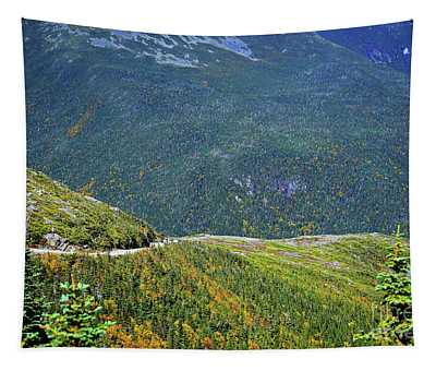 Tapestry featuring the photograph Mountain Road by Patti Whitten