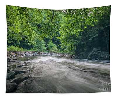 Mountain Stream In Summer #1 Tapestry