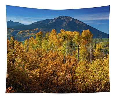 Tapestry featuring the photograph Mountains And Aspen by John De Bord