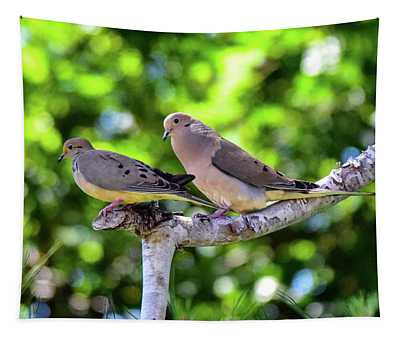 Mourning Doves On Dead Branch 1 Tapestry
