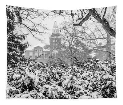 Msu Winter With Snow  Tapestry