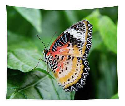 Multi Colored Butterfly Tapestry