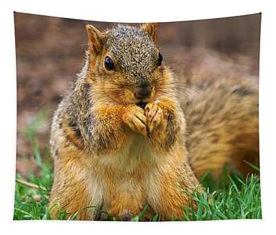 Munching Cute Fox Squirrel Tapestry