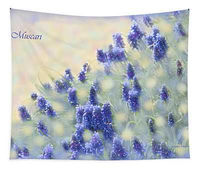 Muscari Morning Tapestry