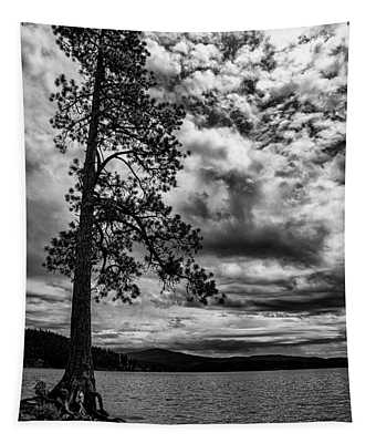 Tapestry featuring the photograph My Favorite Tree Black And White by Matthew Nelson