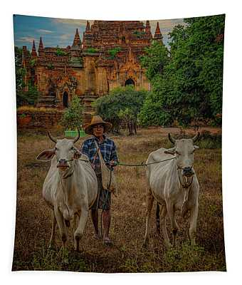 Myanmar Farmer With Cows Tapestry