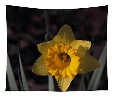 Narcissus 5668 Tapestry
