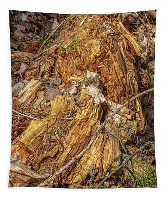 Natural Abstract #i6 Tapestry