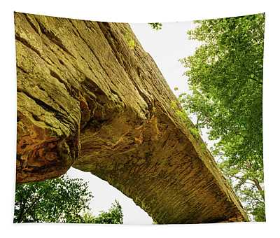 Natural Bridge 4 Tapestry