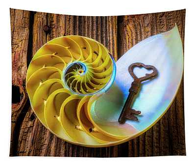 Nautilus Shell And Old Key Tapestry