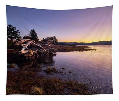Tapestry featuring the photograph Nehalem Bay Sunrise by Whitney Goodey