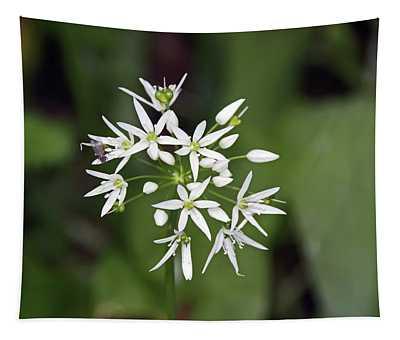 Neston. Wild Garlic. Tapestry