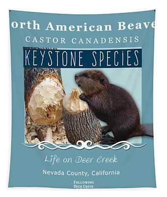 North American Beaver Tapestry