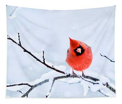 Northern Cardinal In Winter 1 Tapestry