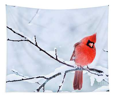 Northern Cardinal In Winter 2 Tapestry