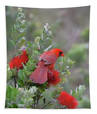 Northern Cardinal On Ohia Lehua Flower Tapestry