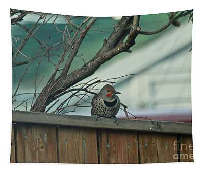Northern Flicker Tapestry