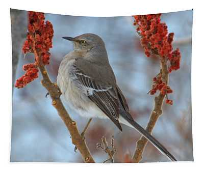 Northern Mockingbird Tapestry