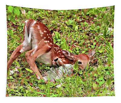 Oh Deer Tapestry