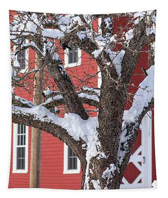 Old Apple Tree Red Barn Winter In New Hampshire Tapestry
