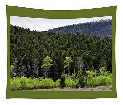 Old Growth New Growth Tapestry