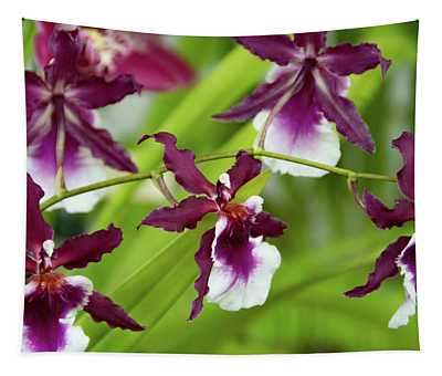 Oncidium Orchids Tapestry