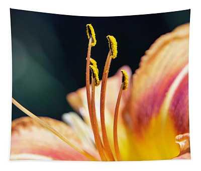 Orange Day Lily Stamen Tapestry