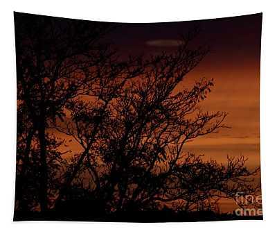 Orange Morning Tapestry