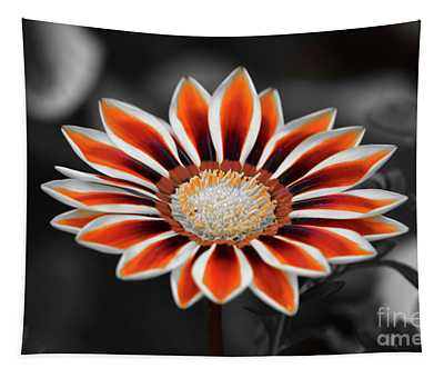 Tapestry featuring the photograph Orange Only Gazania by Patti Whitten