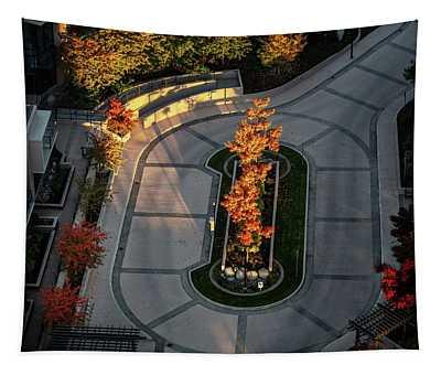Orange Trees In Autumn Tapestry