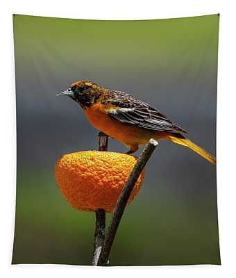 Oriole And Orange Tapestry