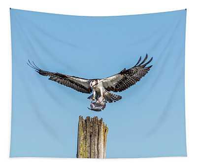 Osprey Landing With Flatfish Tapestry