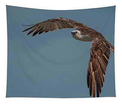 Osprey Tapestry
