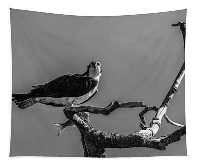 Osprey With Lunch Tapestry