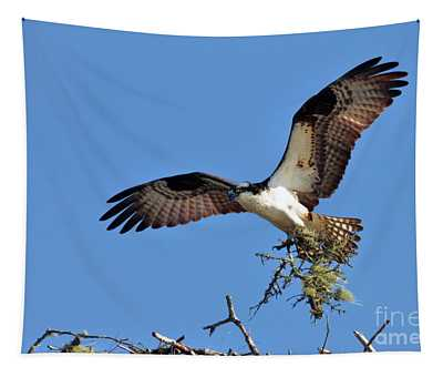 Osprey With Nesting Materials Tapestry