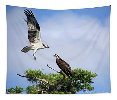 Ospreys At Blue Cypress Lake Tapestry