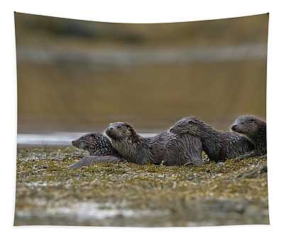 Otter Family At Dusk Tapestry