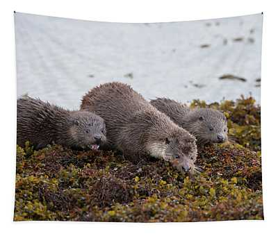 Otter Family Fishing Tapestry